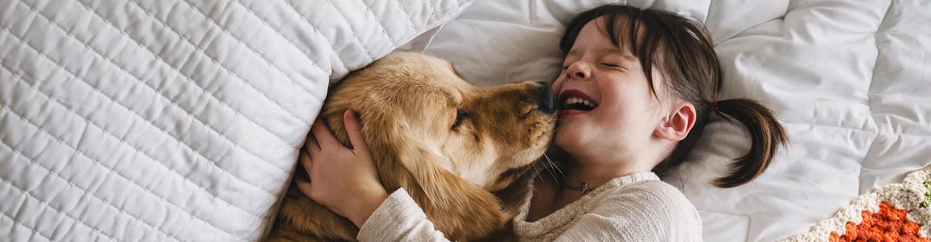 inshared dierenverzekering